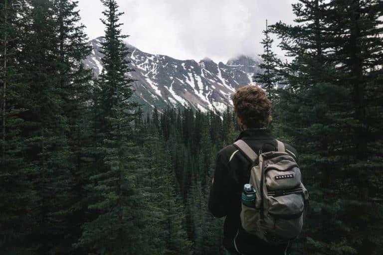 Junge mit Rucksack steht im Wald